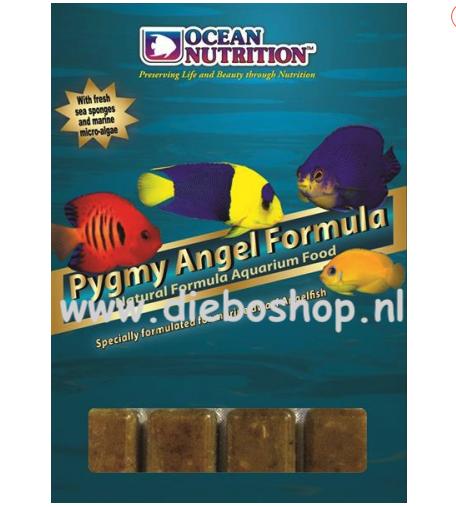 On Blister Pygmy Angel Formula