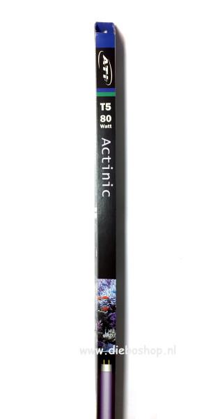 Ati Actinic T5 80 Watt