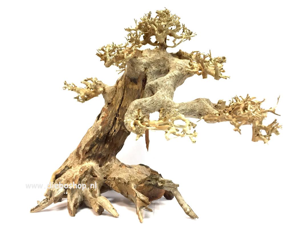 SF Bonsai Driftwood Large