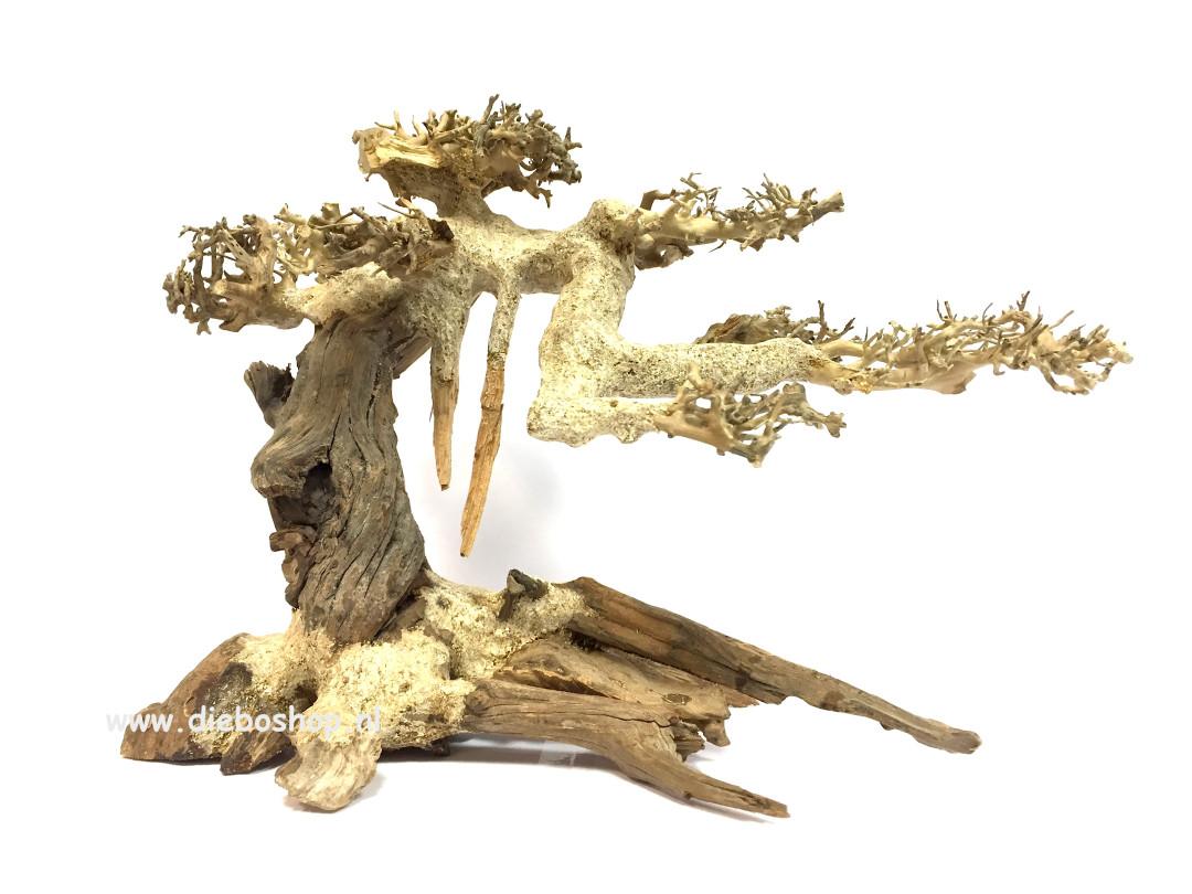 SF Bonsai Driftwood Medium