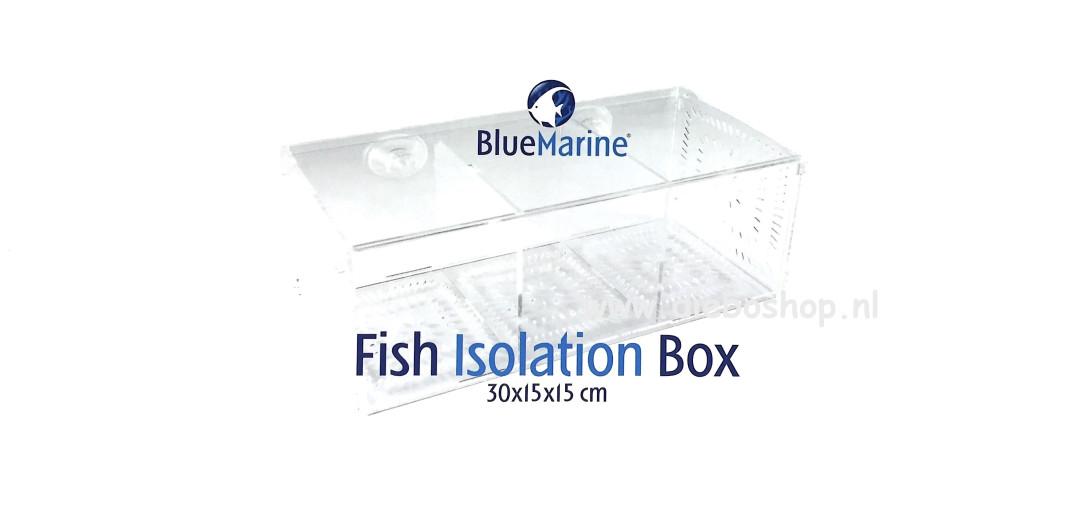 Blue Marine Fish Quarantine Box