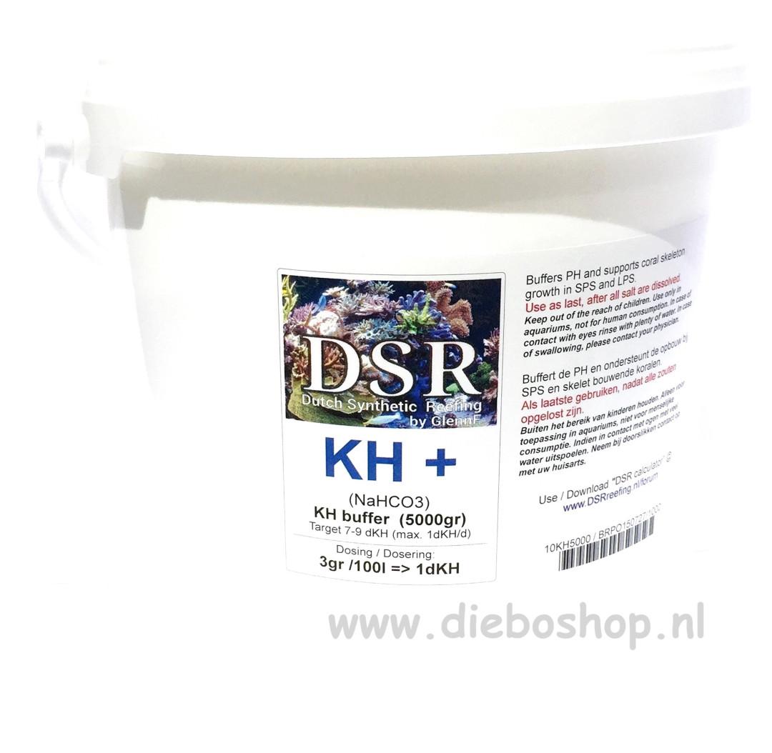 Dsr Kh+