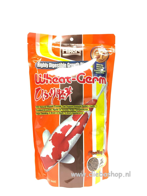 Hikari Wheat-Germ Mini