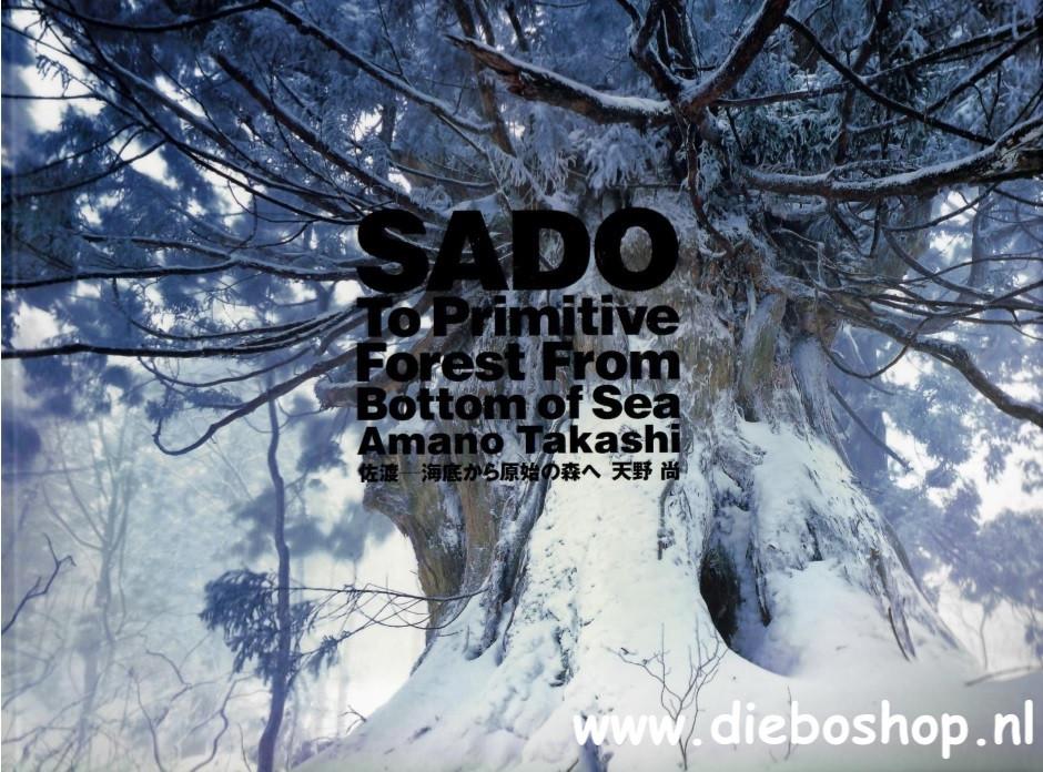 Ada - Sado - To Primitive Forest